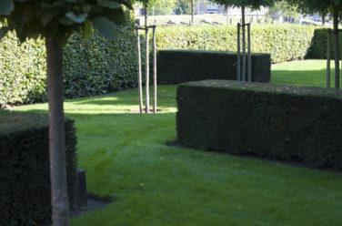 Tuin rondom notariswoning strak begrenst met weelderige invulling - Outlook Groenprojecten