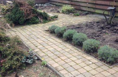 Tuin in vorige staat