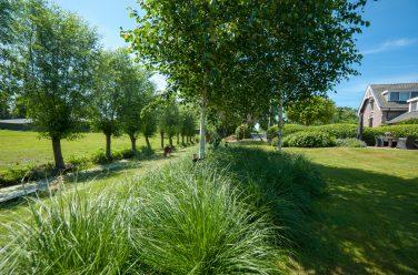 Tuinaanleg en tuinontwerp Outlook Groenprojecten