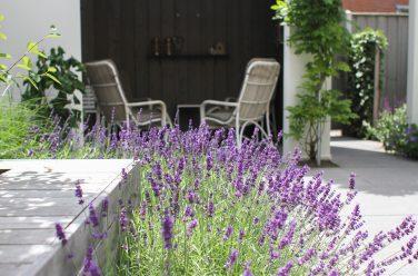 Tuin voorjaar klaar maken