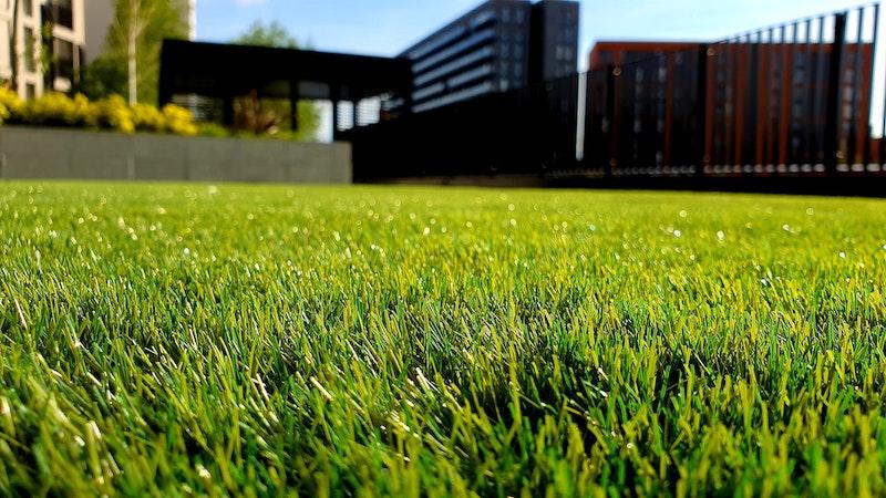 gras onderhoud mei