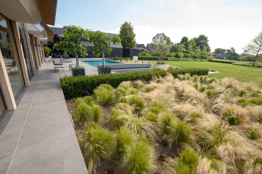 villatuin met grassen